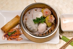 Lunch Special Dim Sum Combo